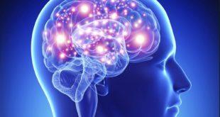 """برمجة الدماغ ليست """"كذبة""""… كيف تتخلص من الذبذبات السلبية؟"""