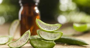 Les clés du succès du traitement naturel de l'acné