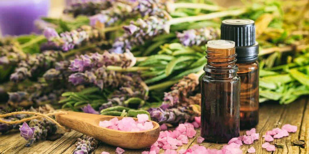 retrouver l'odorat par les huiles essentielles