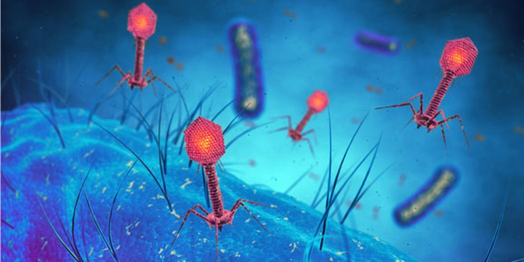 infections résistantes aux antibiotiques